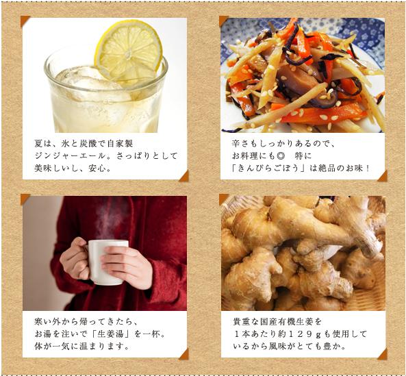 生姜シロップ レシピ