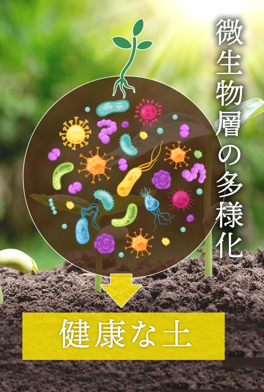 腸内フローラを整えるなら土のフローラ