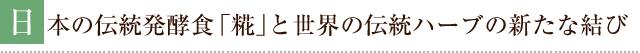 日本の伝統発光食「糀」と世界の伝統ハーブの新たな結び