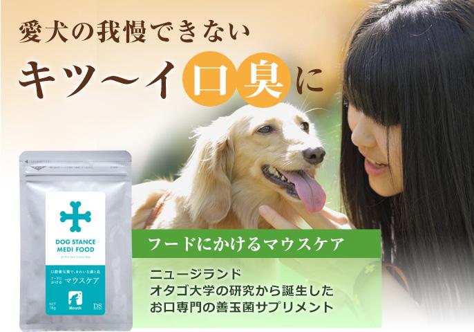 愛犬の我慢できないキツイ口臭に、ニュージランドオタゴ大学の研究から誕生したお口専門の善玉菌サプリメント