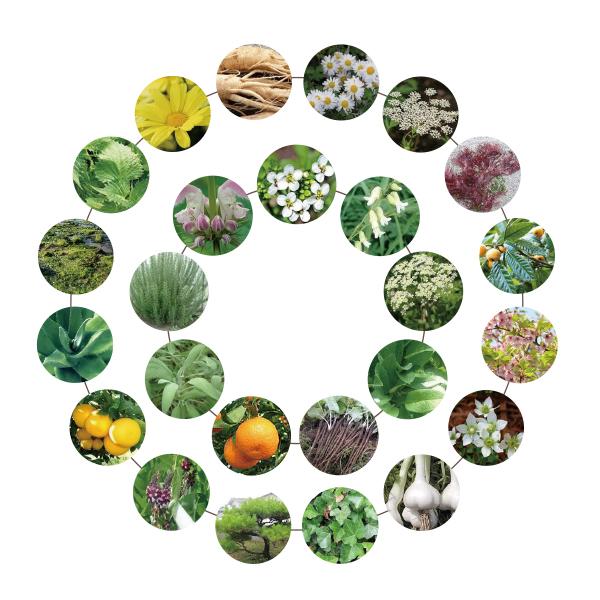25種類の植物由来成分配合
