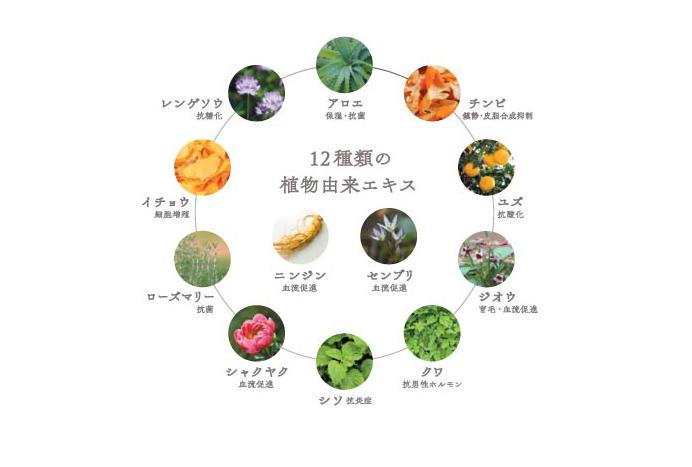 12種類の植物由来エキス
