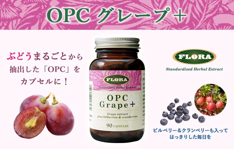OPCグレープ+
