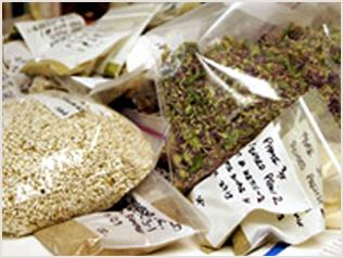 吟味された有機無農薬野菜の原材料