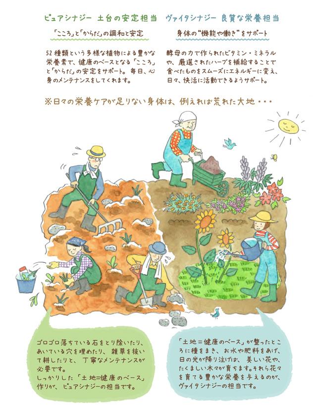 栄養を与える時は豊かな大地の方が荒れた大地よりも効果的