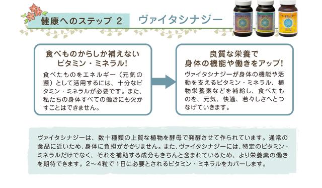 数十種類の上質な植物を酵母で発酵させて作られた、通常の食品に近い形のビタミン・ミネラルサプリメントです。